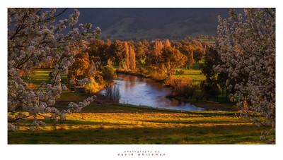 Tumut River in Spring