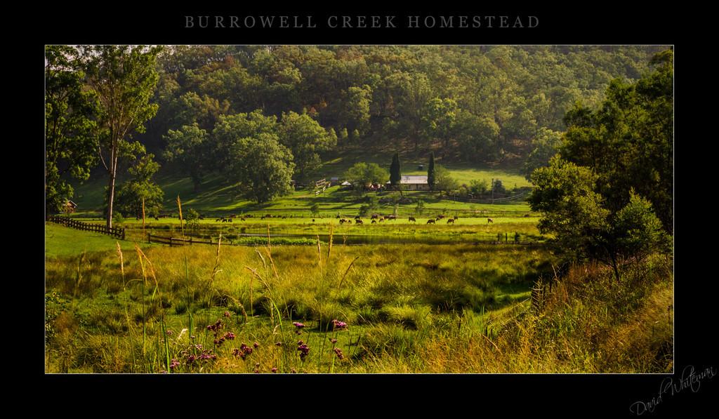 Borrowell Creek Homestead
