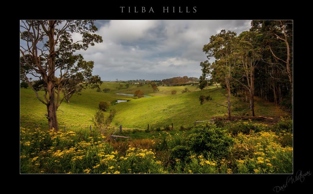Tilba Hills