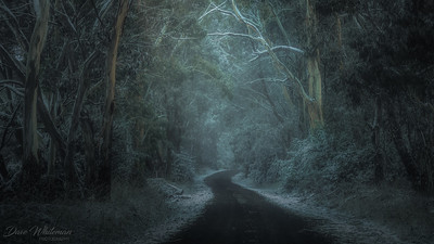 The road to Mozart in Winter