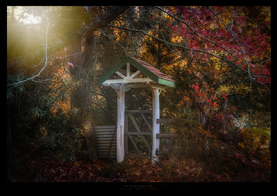 Autumn at the Cottage Gate