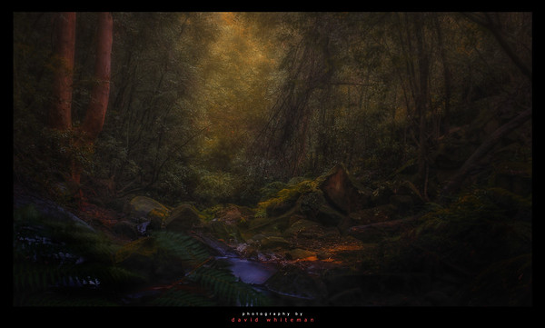 The Path to Middle Earth