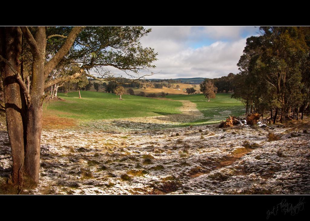 Edith Landscape