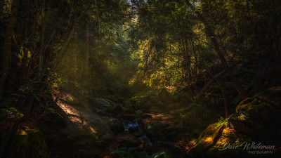 Lapstone Creek