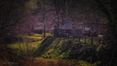 Carcoar Cabin in Spring