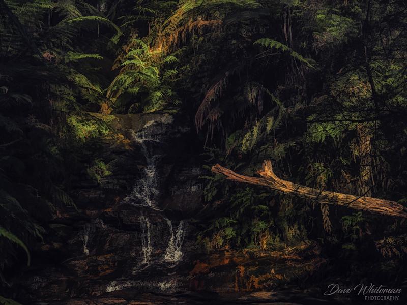 Leura Upper Cascades