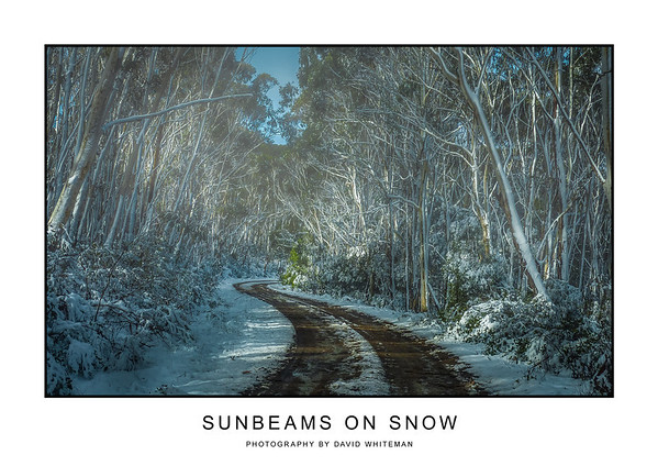 Sunbeams on Snow