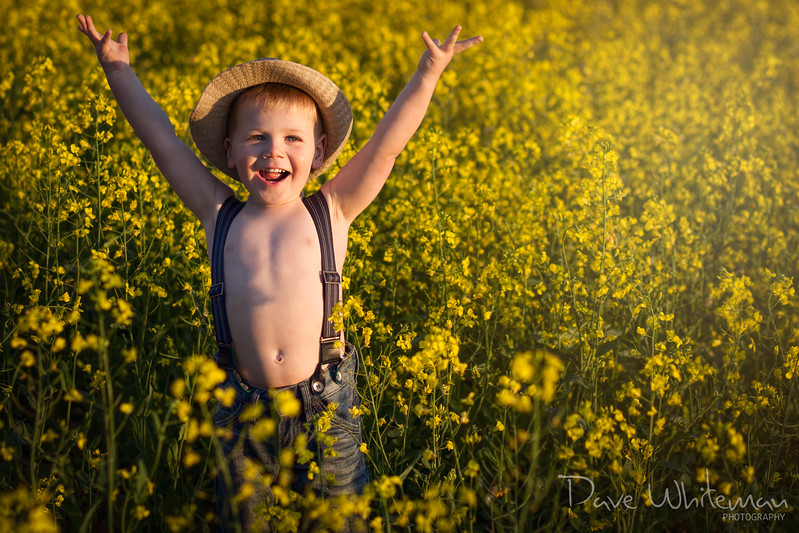 Canola Kid