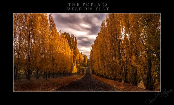 The Poplars at Meadow Flat