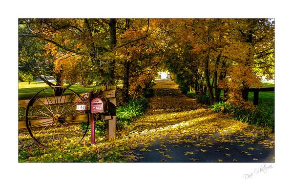 Mulgoa Autumn