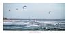 Windsurfers off Nobbys