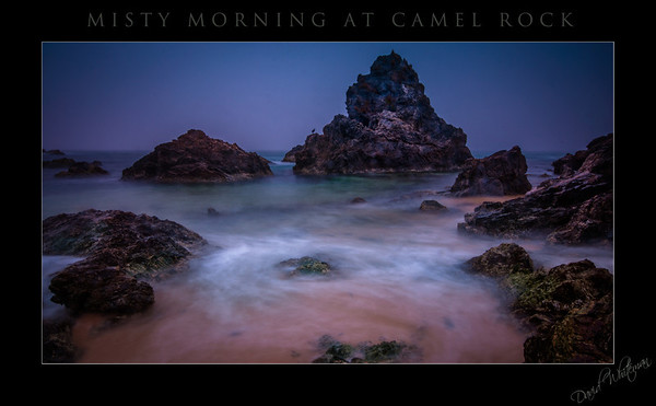 Misty Morning at Camel Rock
