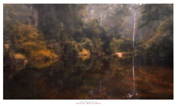 Autumn evening at Wheeny Creek