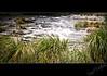 Kangaroo River