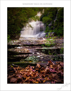 Somersby Falls in Autumn