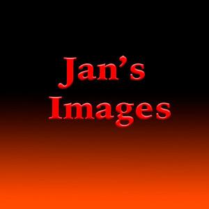 JansImages-1_2