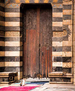 Egyptian Cat Door