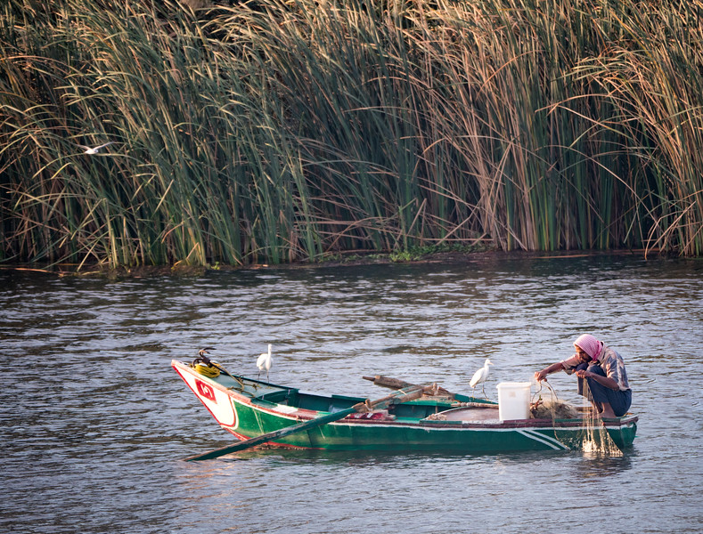 Nile River Fisherman