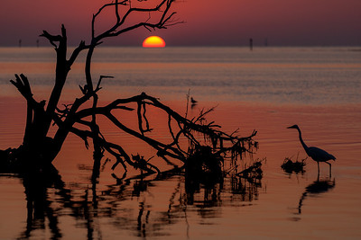 Sunrise at Anne's Beach, Lower Matecumbe Key, Florida