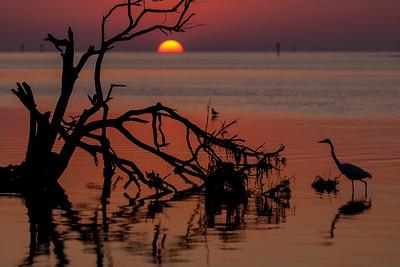 Sunrise at Anne's Beach, Lower Matecumbe Key, Florida