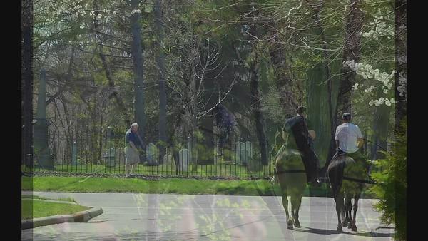 VIDEO - A Berea Spring