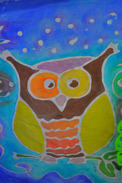 Fell in love with this batik owl.