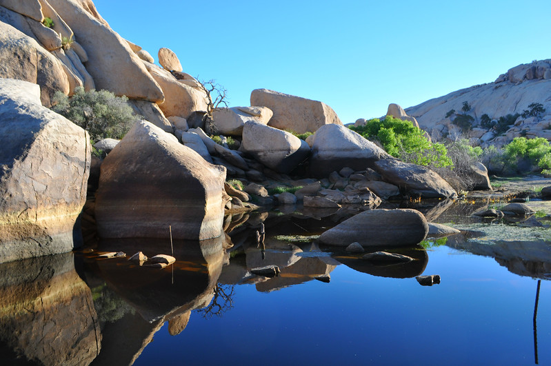 Doesn't get much better than a sunrise at Joshua Tree National Park's Barker Dam pool. This was a beautiful part of my birthday in Josua Tree.
