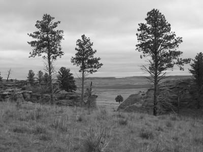 View of the plains surrounding Medicine Rocks State Park near Ekalaka, Montana
