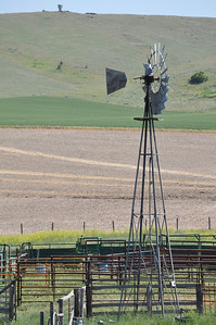 Windmill on a Montana farm. Near Norris, Montana.  7.09