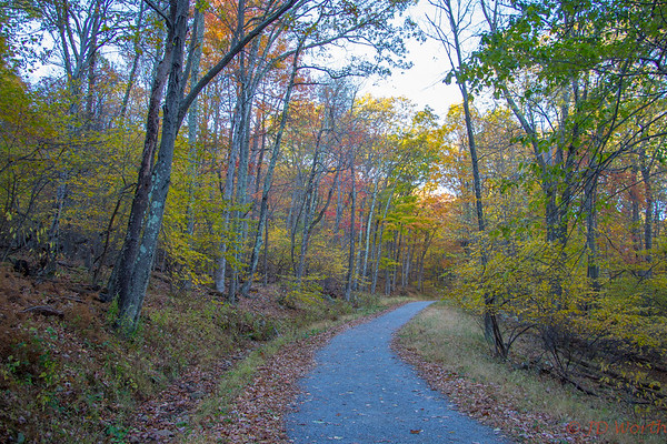 Shenandoah National Park Trail - L4
