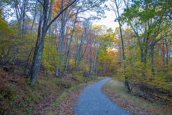 Shenandoah National Park Trail - L4