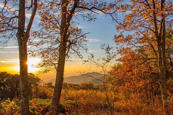 Shenandoah National Park Fall Sunrise Thorofare Mountain Overlook - L7