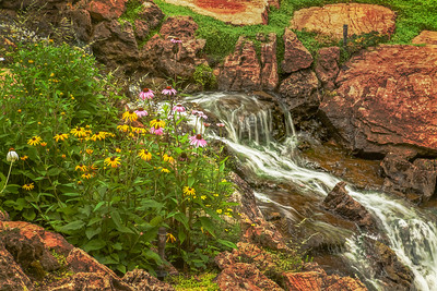 Stream, Flowers, Rocks