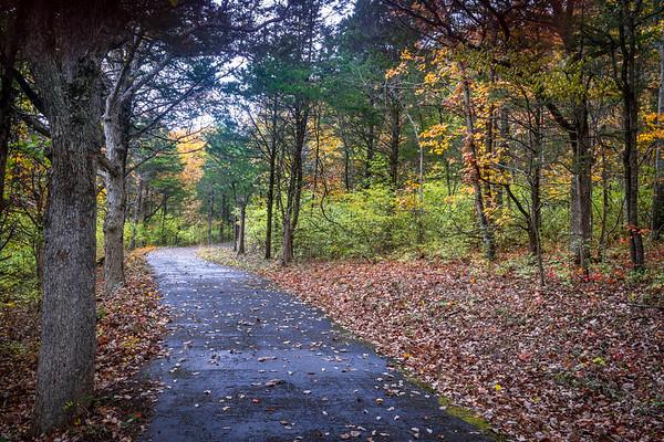 Bluff Trail Fall Path