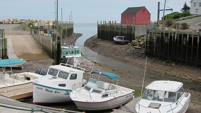 Fundy Low tide