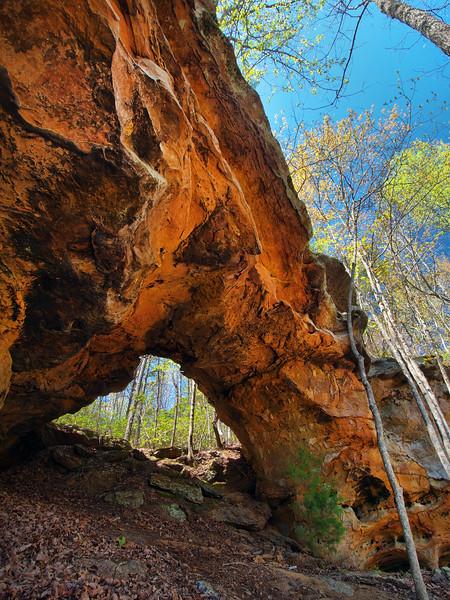 Rattler Arch