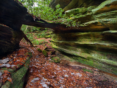 Rock Creek Natural Bridge