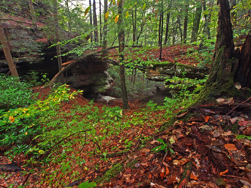 Garrison Natural Bridge