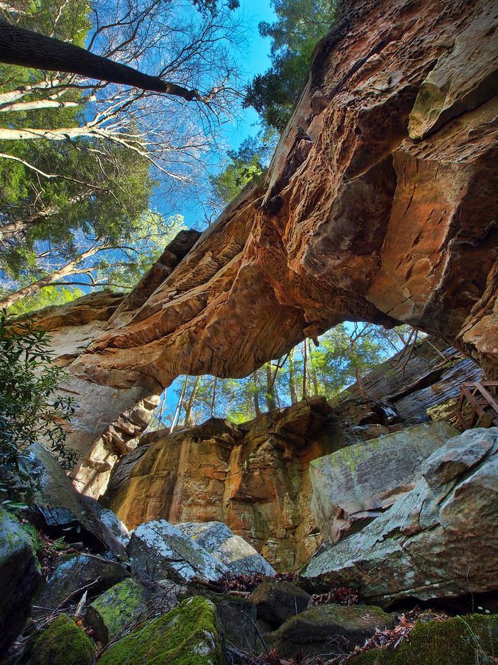 Split Bow Arch