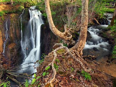 Mill Springs - Left Falls