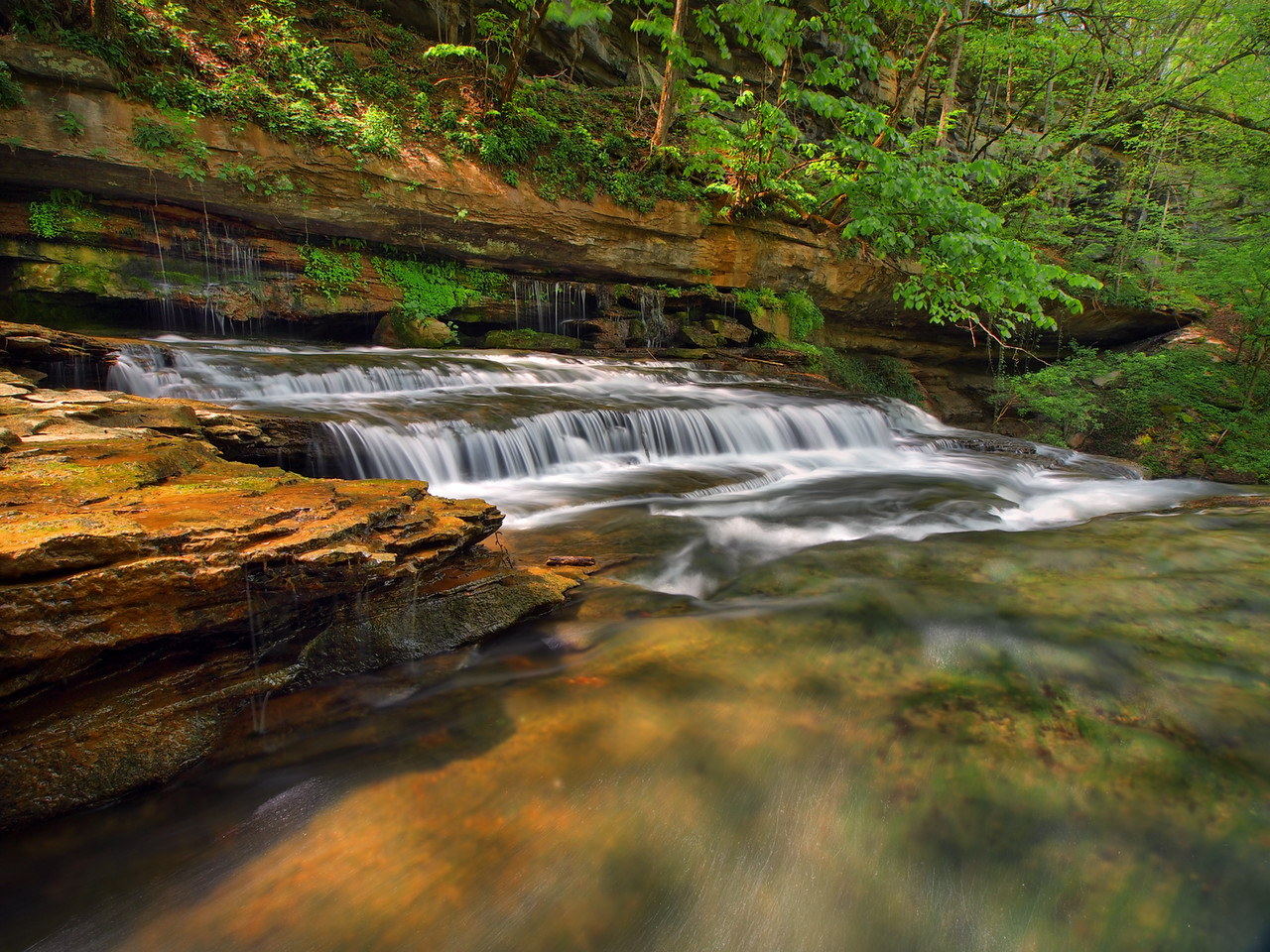 Town Creek Falls - Middle Section