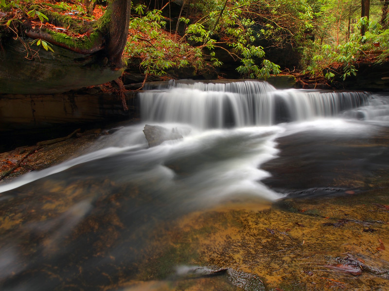 Pounder Branch - Unnamed Falls