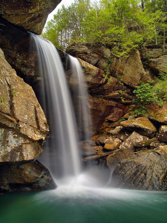 Eagle Falls #1
