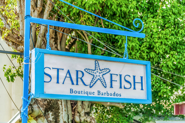 Star Fish Barbados