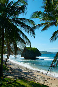 Bathsheba in barbados