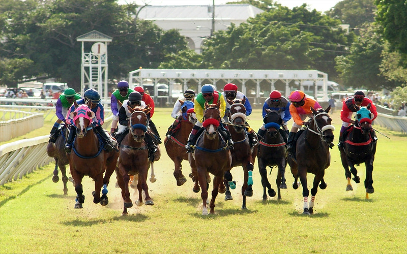 Horse Racing at the Garrison Savannah in Barbados photographed by Barbados Photography