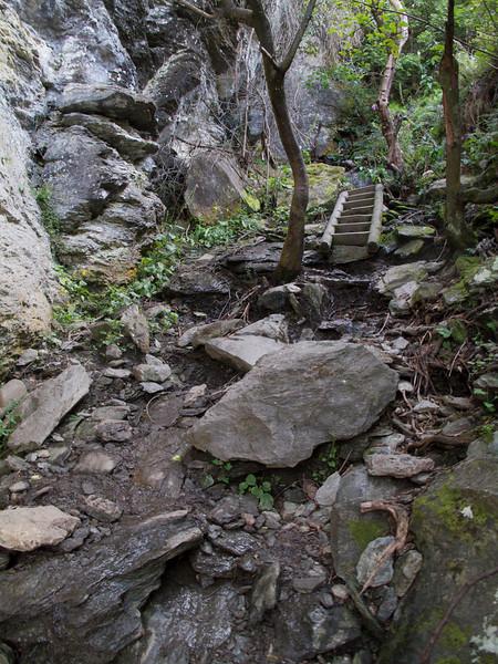 Climbing up Rocky Mountain