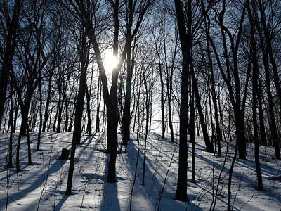 Iowa Winter - Snowbound