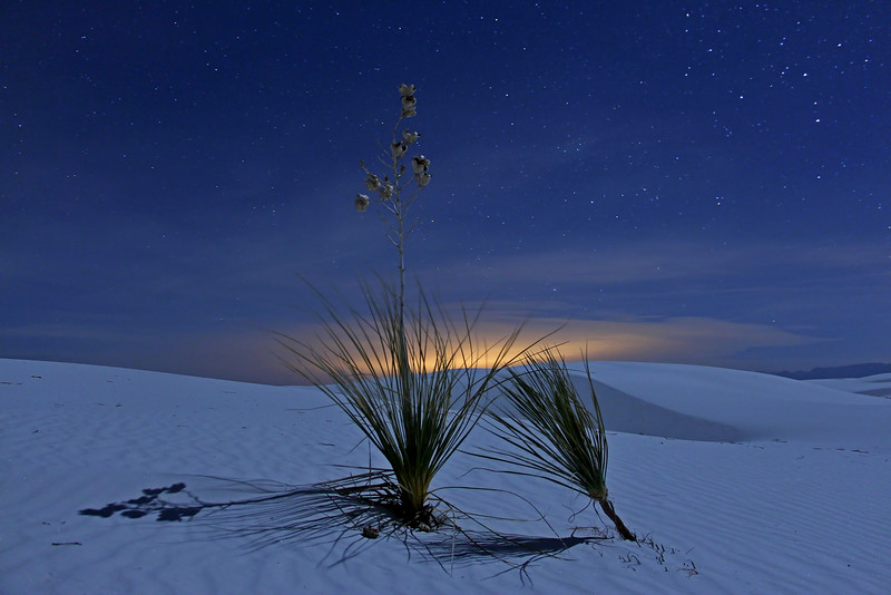 -White Sands National Monument, New Mexico