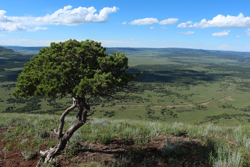 -Capulin Volcano National Monument, New Mexico